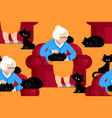 cat lady pattern grandmother and cat sitting on vector image vector image