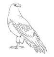 eagle line art 11 vector image vector image