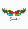 glasses as pineapples vector image