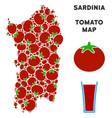 italian sardinia island map composition of tomato vector image vector image