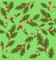 mistletoe branch with green leaves for christmas vector image vector image