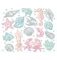 seamless pattern sea animal vector image vector image
