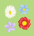 set colored flowers vector image