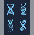 set of dna icon chains genetic personal codes vector image vector image