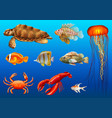 different kinds of wild animals underwater vector image