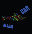everyone should have a car alarm text background vector image vector image