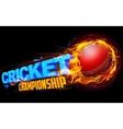 Fiery cricket ball vector image vector image