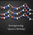 koningsdag background vector image