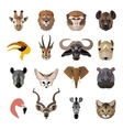 Set of african animals faces isolated icons Flat vector image vector image