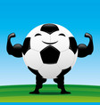 strong soccer ball vector image