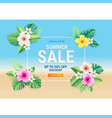 summer sale card with hibiscus flowers vector image