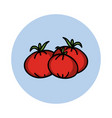 tomatoes hand drawn icon cartoon vegetable vector image vector image
