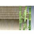 bamboo under the rain vector image vector image