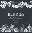 card with hand drawn berries vector image vector image