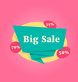 color big sale label isolated on pink vector image