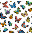 decorative butterflies pattern or vector image vector image