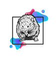 hand drawn hamster with frame and abstraction vector image vector image