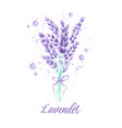 lavender background with flowers watercolor vector image vector image