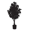 Office and house beauty tree silhouette vector image vector image