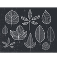 set of hand drawn tree leaves - white on vector image