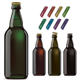 Beer bottles and covers vector image