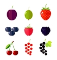 Berries Flat vector image