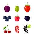 Berries Flat vector image vector image