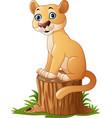 cartoon feline sitting on tree stump vector image vector image