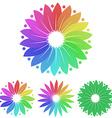 Floral Logo Set vector image vector image