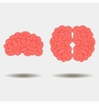 Human brain views set vector image vector image