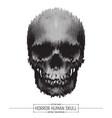 human horror skull vector image