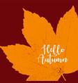 orange grunge autumn background vector image