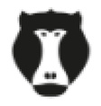 Pixel head of baboon monkey in vector image