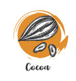 cocoa bean drawn sketch chocolate design vector image vector image