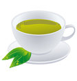 Cup of green tea with leafs vector image vector image