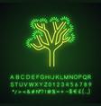 joshua tree neon light icon vector image