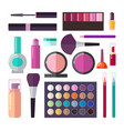 professional luxurious decorative cosmetics set vector image vector image