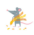 cute rat with wheat grains harvest vector image vector image