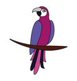 exotic parrot bird leaves tropical vector image vector image