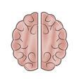 human brain idea innovation thinking memory vector image vector image