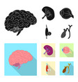 isolated object body and human logo set of vector image vector image