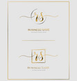 r s rs initial handwriting logo letter vector image vector image