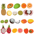 Tropic fruit isolated set Flat style set of vector image vector image