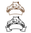 wild kodiak bear with banner as a mascot isolated vector image vector image