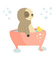 cute sloth having a bath animal design vector image