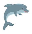 dolphin cartoon flat vector image