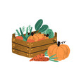 local organic harvested crops in a wooden box vector image vector image