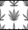 seamless pattern with leaves of marijuana with vector image vector image