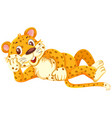 a leopard lying on white background vector image vector image