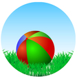Ball is in the green grass vector image vector image